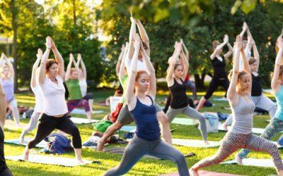 Vinyasa Yoga nach Jela ab Oktober